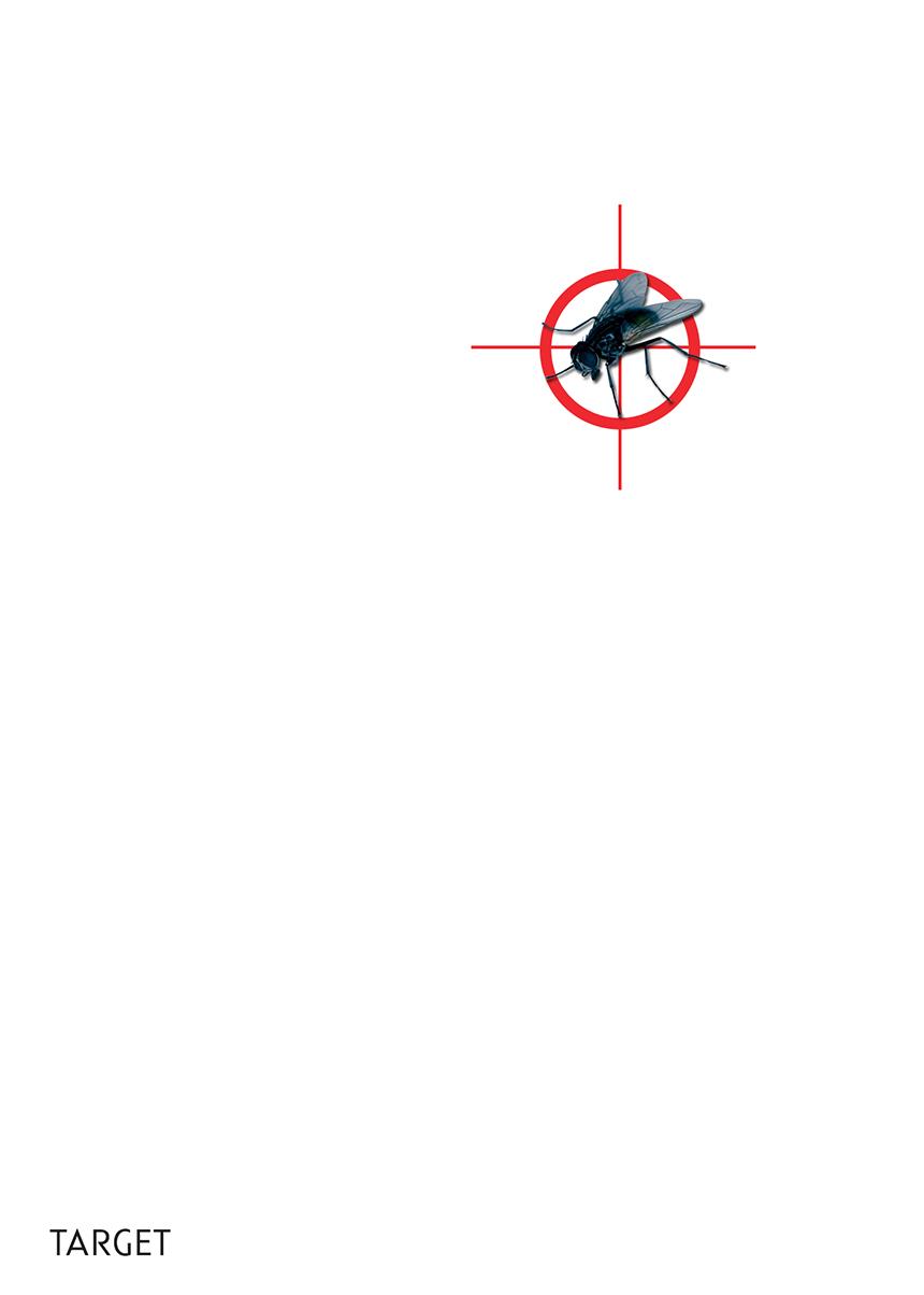 ivan_kashlakov_blank_poster_target_1