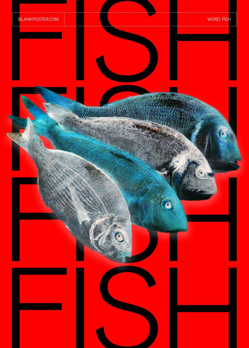 matthew_lilley_fish-2